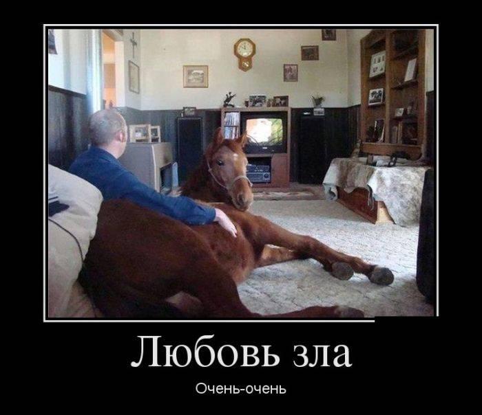 Россия глазами русских 60 фото