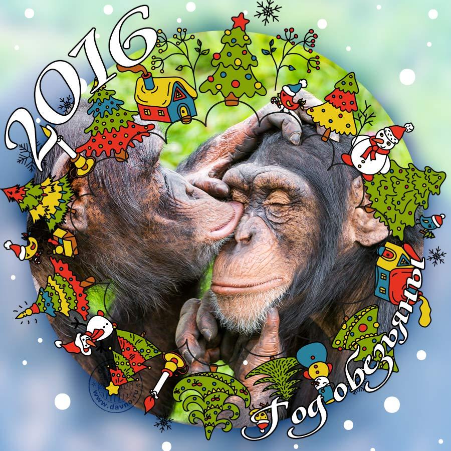 Открытку с новым годом обезьяны