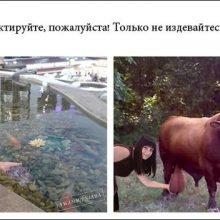 Картинки «отфотошопте пожалуйста». (13 фото)