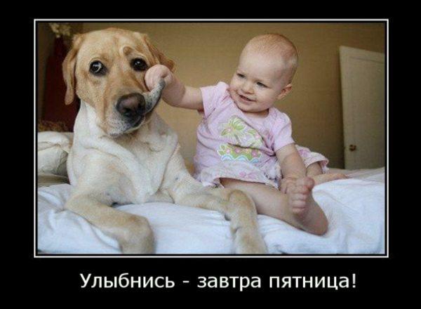 Смешные-демотиваторы-про-пятницу1