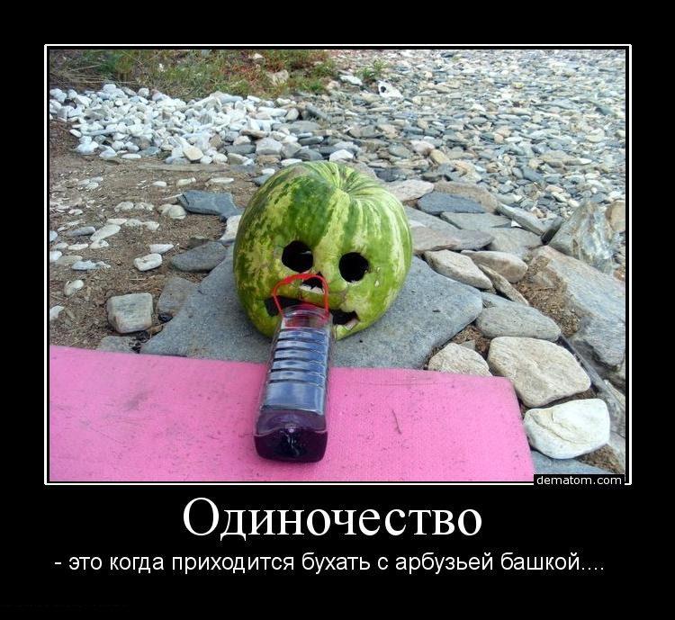 335057-odinochestvo_eto_kogda_prihoditsia_buhati_s_arbuziei_bashkoi