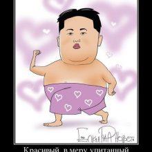 Приколы про Ким Чен Ына. (11 фото)