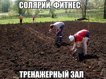 http://bipbap.ru/wp-content/uploads/2016/10/1429294079_5oygcox2u-c.jpg
