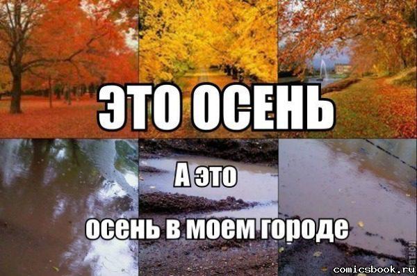 prikol-i-gde-tolko-normalnaya-osen-113585