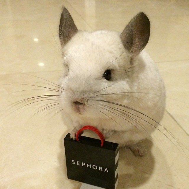 Милая кроля