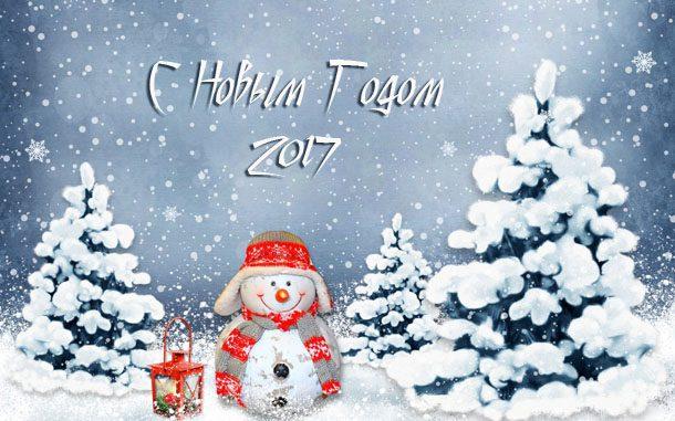 Новогодний снеговик 2017