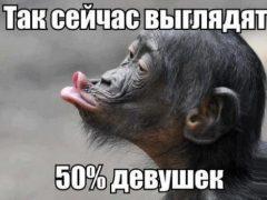 Фото приколы, смешные картинки (42 фото)