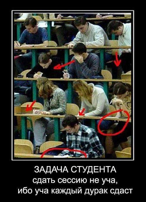 Задачи студента