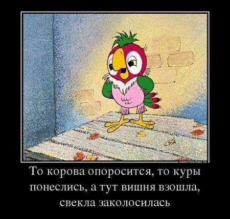 1353678234_34fff