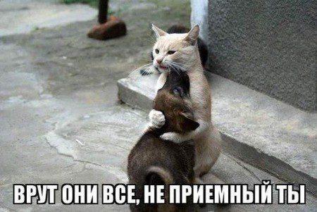 1457870290_prikol-21