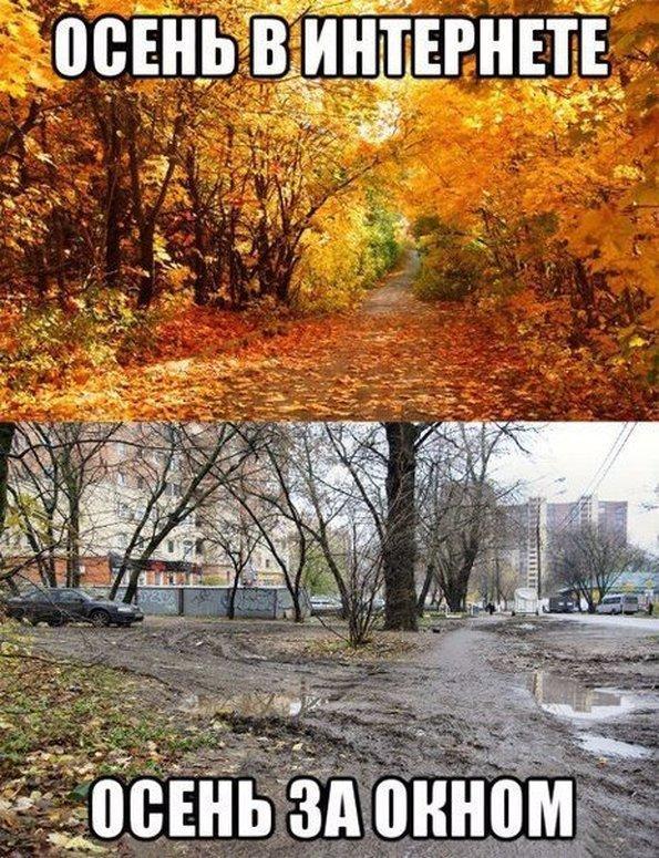 осень в реальности