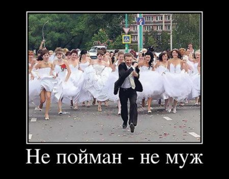 demy-pro-svadbu-01