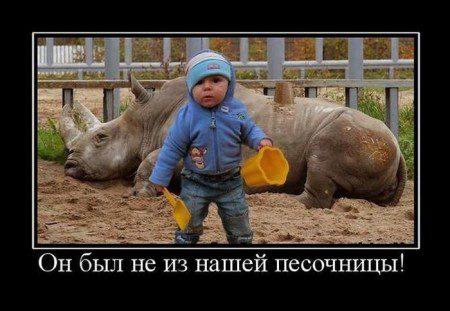 pjatnichnye_demotivatory_134_foto_91