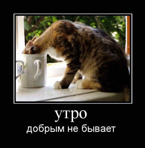 1286764138_utro