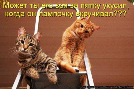 1332076670_kotomatrix_08