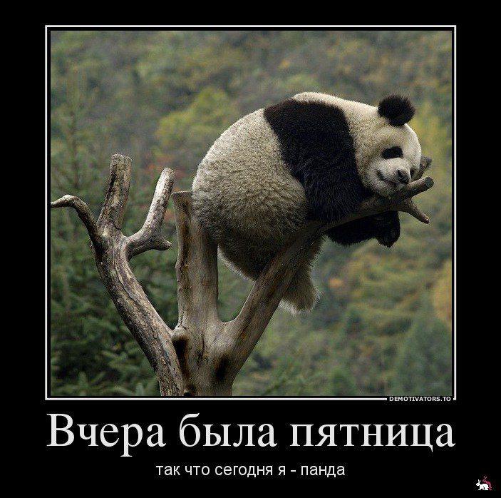 1339825251_34535436_vcherabyilapyatnitsa