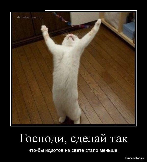 1361637521_1361433845_demotivatory_29