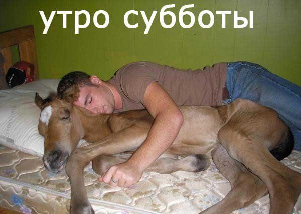 1366366761_1219502439_lochadko