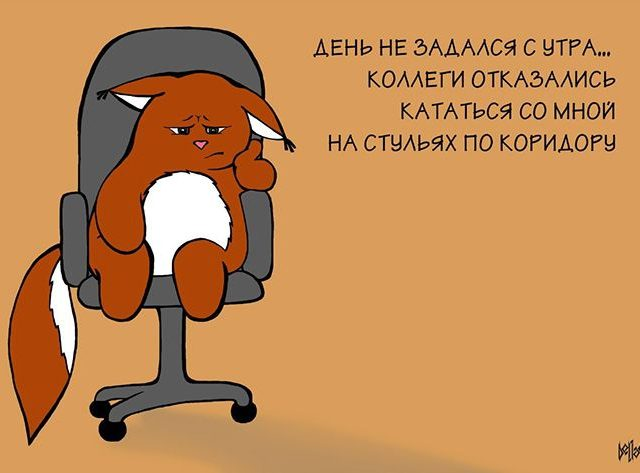 1366530337_kot17