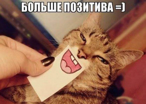 1372047912_yovez5yldwk-500x357