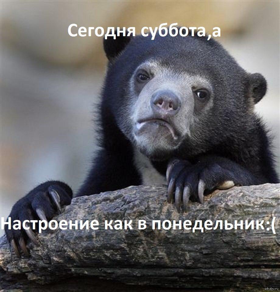 1379172661_97631462
