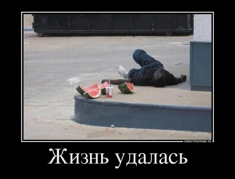 2488181_zhizn-udalas