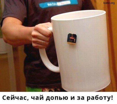 350553-2013-06-10-08-00-42-bomz-org-lol_seyichas_chayi_dopyu_i_za_rabotu