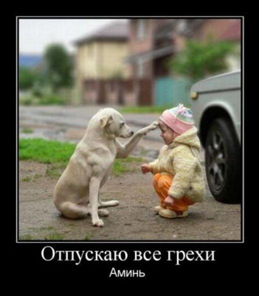 samyie-prikolnyie-foto-detey-i-zhivotnyih-18