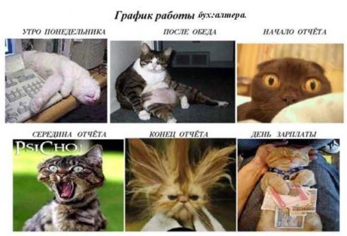 stimka-ru_1296723783_buh