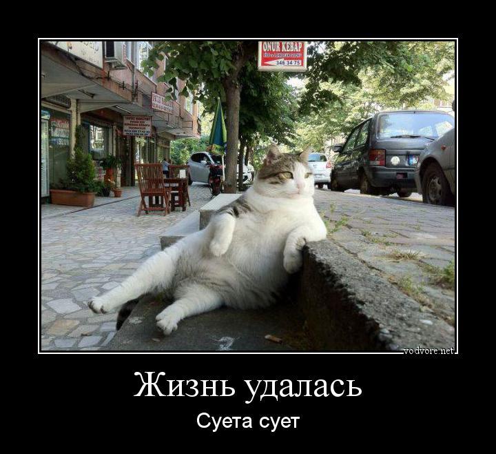 cr_538712861406198040036