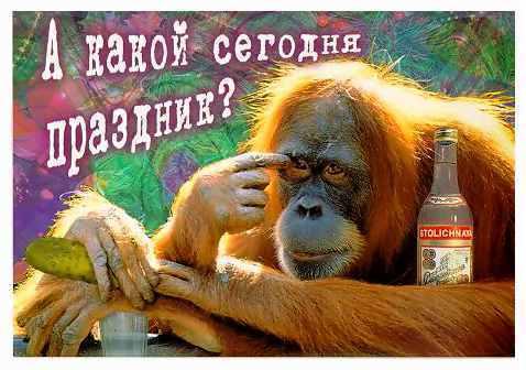 hohmodrom_abizjan-s-votkoy