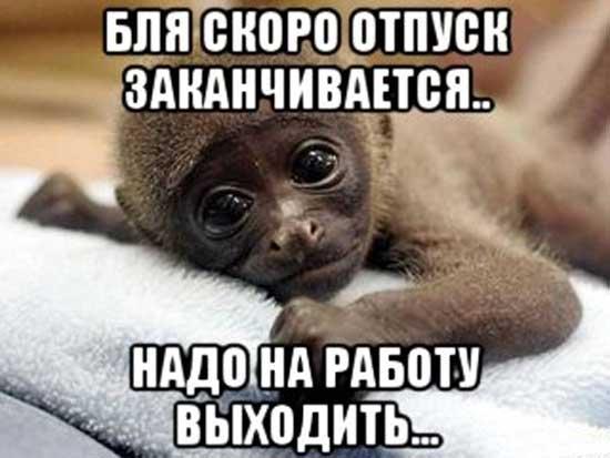 porno-devushki-poebatsya