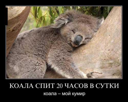 kartinki_pro_zhizn_06