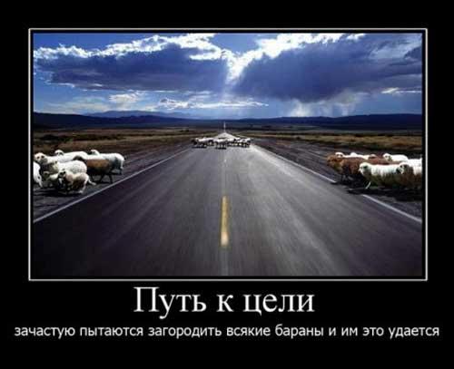 kartinki_pro_zhizn_10