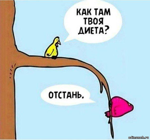 odinsmeh-ru_518