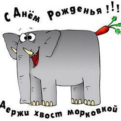 pozdravleniya-s-dnem-rozhdeniya-podruge-kartinki-prikolnye-1