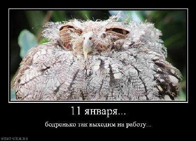 prikolnye-demotivatory-pro-rabotu_2