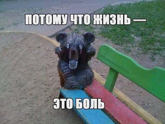prikoly-zhizn15