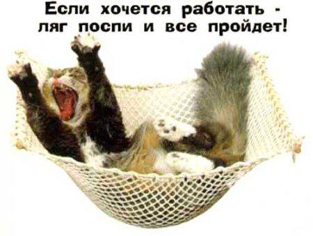 prikoly_pro_rabotu_02