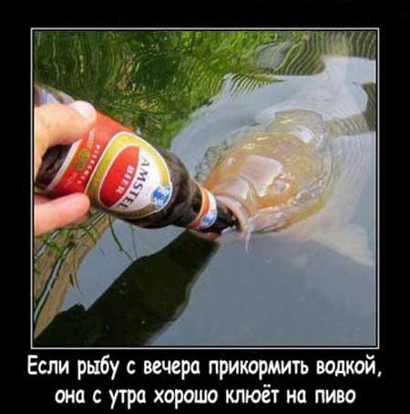pro_rybalku_01