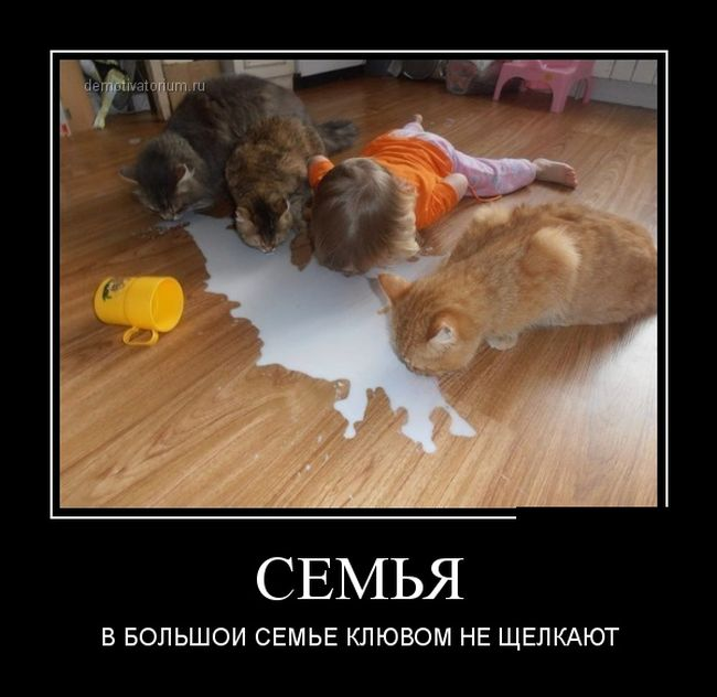 smeshnie_demotivatori_72