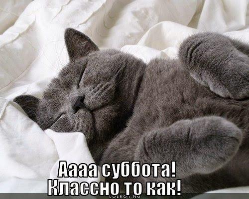 subbota_1339935045