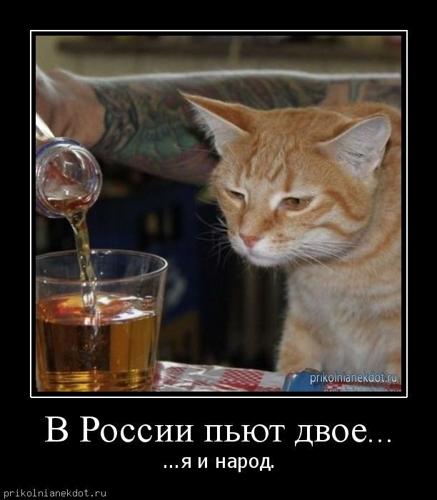 v-rossii-pyut-dv