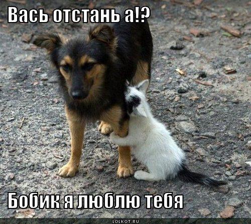 vas-otstan-a_1355806468