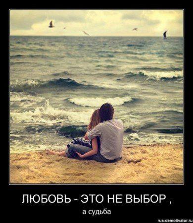 x_ddb79758