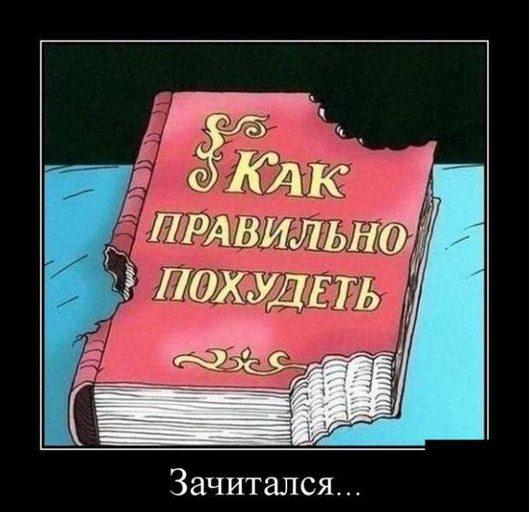 zachitalsya-list