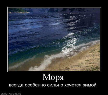 1308985167_819948_morya