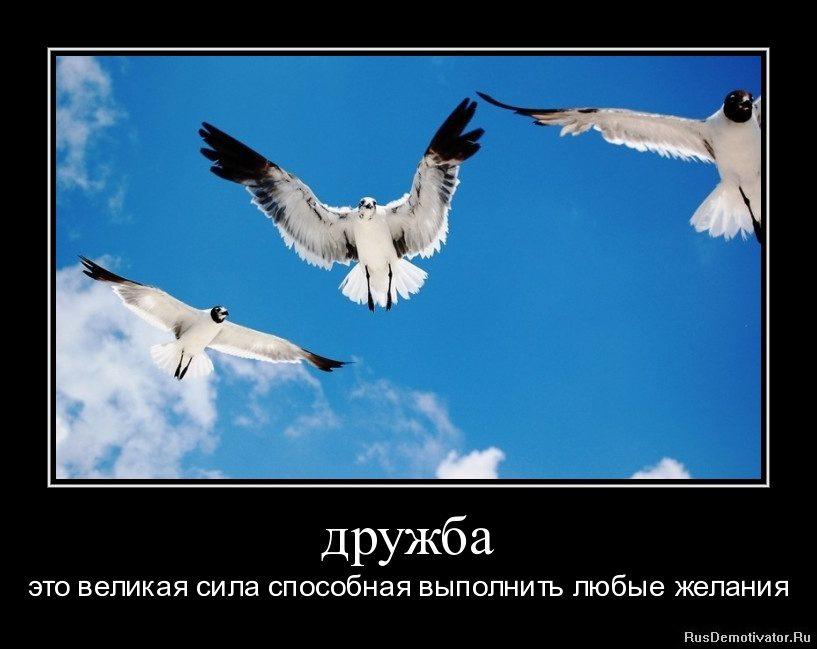 1309270697-druzhba