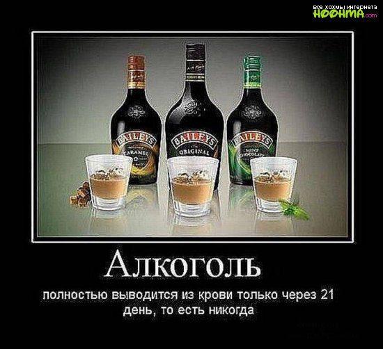 1315352608_demotivatory_pro_alkogol_1