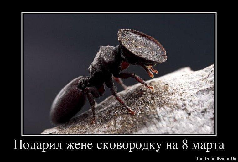1330929716_30856399_nikogda